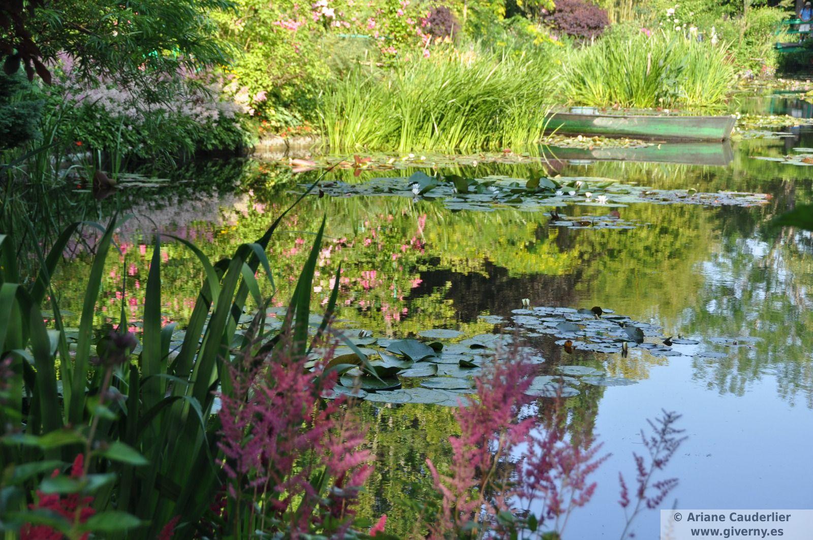 Los jardines de claude monet giverny for Filtros para estanques de jardin
