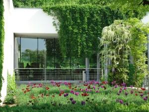 museo de los impresionismos Giverny
