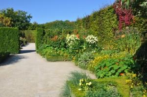 mdig-jardin