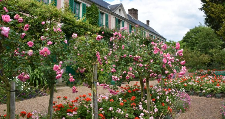 El jardin de rosas de Giverny
