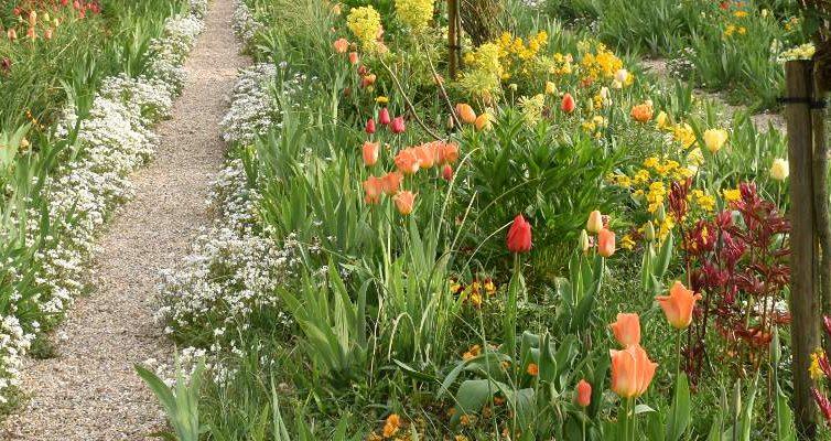 Las flores de Giverny